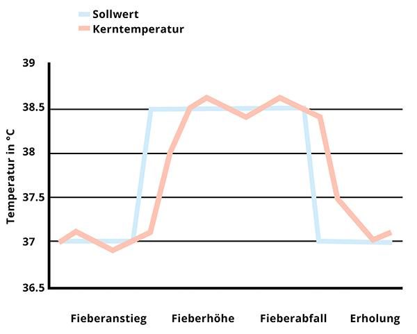 Fieberphasen Verlauf