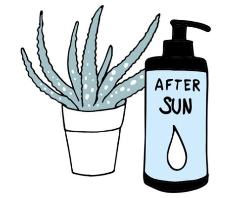 Sonnenbrand Hausmittel Aloe Vera in der After-sun
