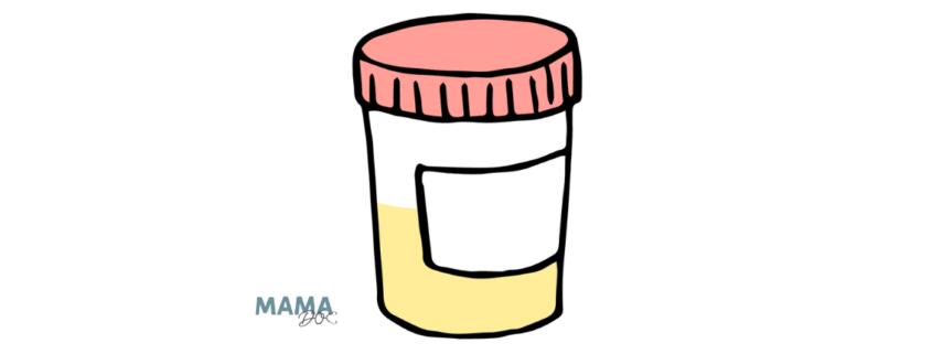 Mutterpass: Urin-Test auf Chlamydien